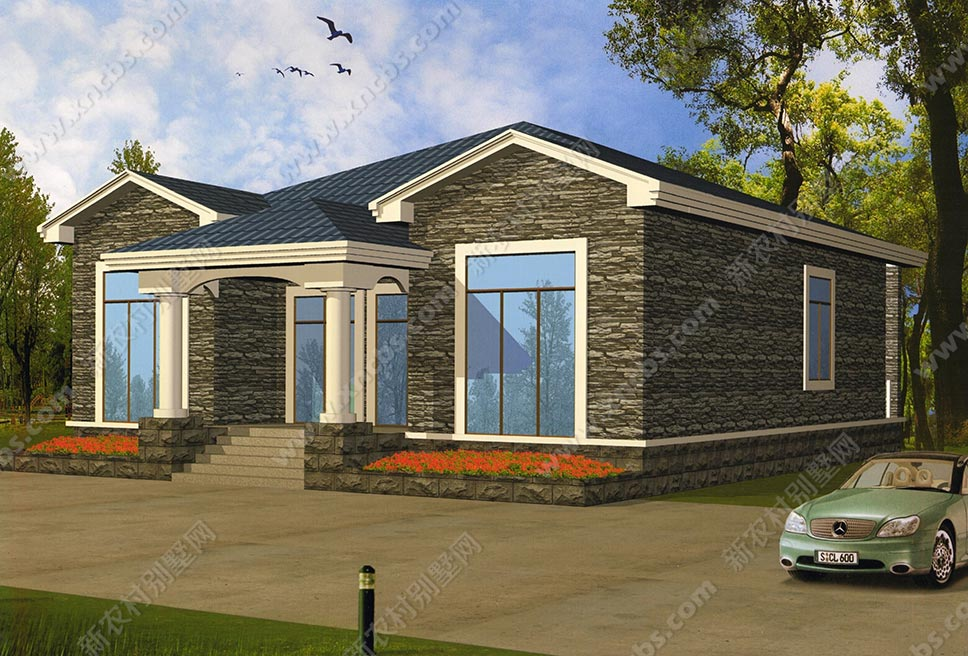 单层房屋设计图,1层自建别墅效果图
