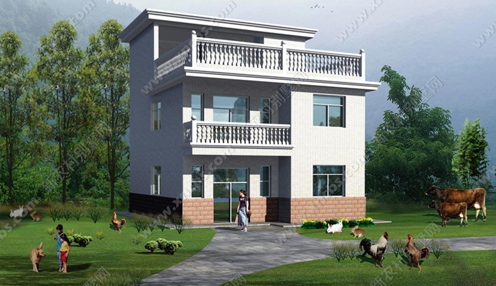 两间二层楼房设计图_90平普通农村自建两层半楼房户型图_新农村别墅网
